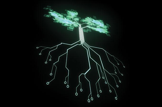 """Primul """"copac digital"""" cu conexiune Wi-Fi din Romania"""