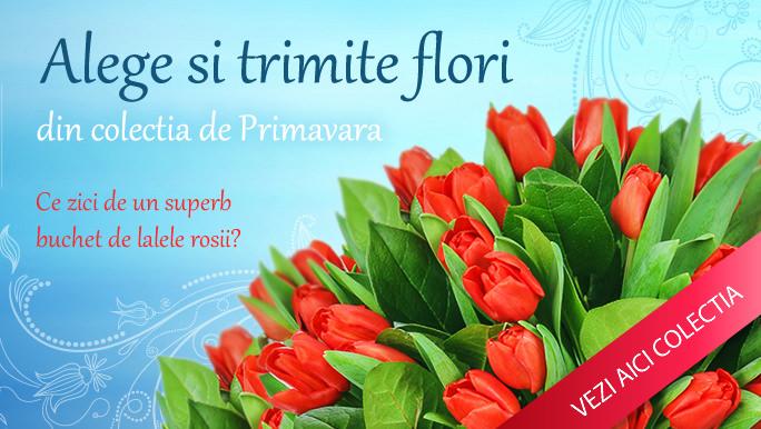 Florarii online din Bucuresti
